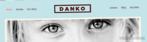 Danko WordPress Theme