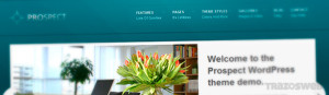 Prospect WordPress Theme