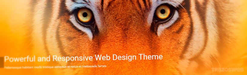 Flat Theme WordPress Theme