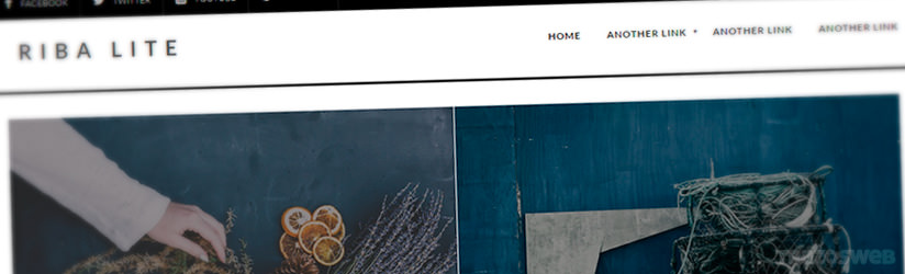 Riba Lite WordPress Theme